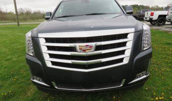 2020 Cadillac Escalade full